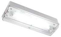 IP65 8W Maintained c/w lamp, white